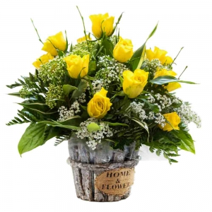 Order Sunshine Radiance flowers