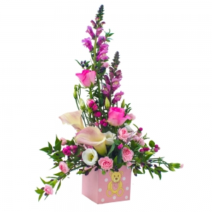 Order New Baby Girl Flowers flowers