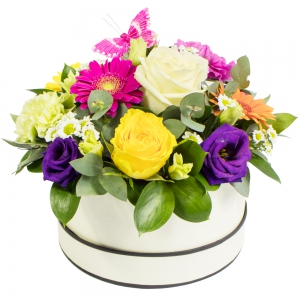 Order Simply The Best