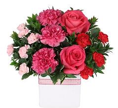 Order Raspberry Rush flowers