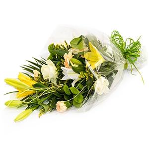 Order Lemon Sorbet flowers
