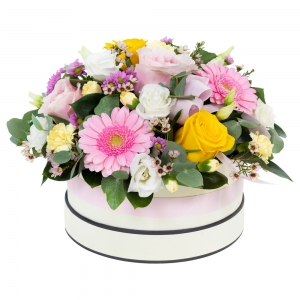 Order Dreamland flowers
