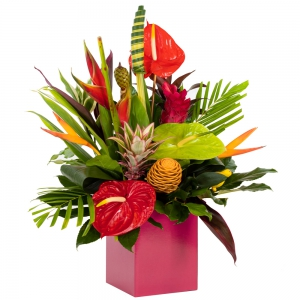 Order Tropical Wishes flowers