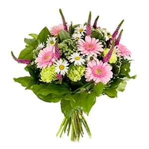 Order Cute flowers