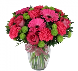 Order Knockout flowers