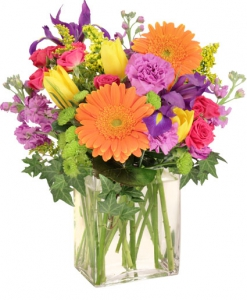 Order Celebrate Today flowers