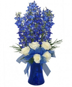 Order Brilliant Blue flowers