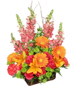 Order Brilliant Basket flowers