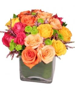 Energetic Roses