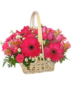 Order Best Wishes flowers