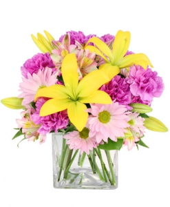 Order Spring Forward flowers