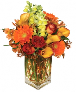 Order Autumn Adventure flowers