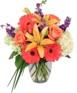 Order Aurora flowers