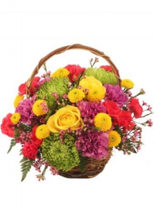 Order Colourful flowers
