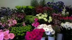 Flowerwise