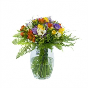 Freesia Mix In Vase
