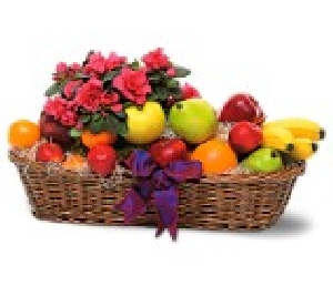 Fruit Basket With Plant