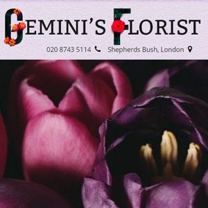 Geminis Florist