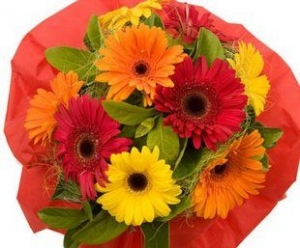 Gerbera Bouquet.