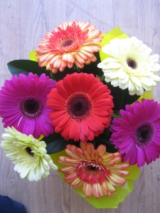 Gerbera Box Arrangement