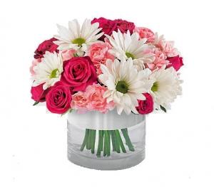 Gerbera Daisies And Roses