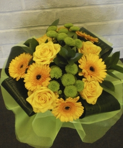 Golden Shades Hand Tied