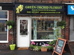 Green Orchid Florist