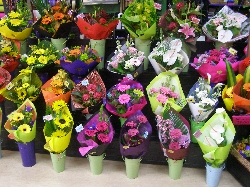Greerton Florist
