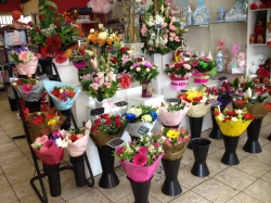 Guildford Florist