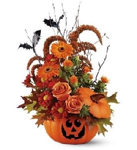 Halloween Pumpkin Bookay