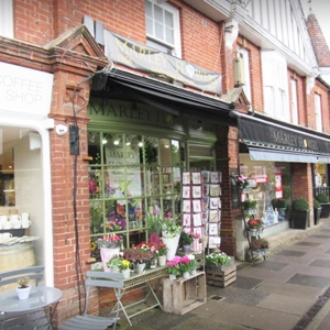 Haslemere Flowers