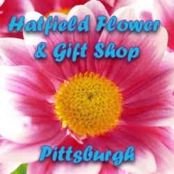 Hatfield Flower and Gift Shop - West View