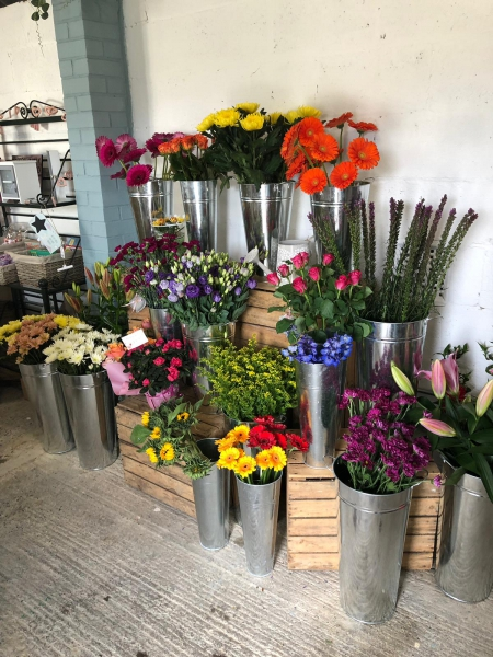 Hetty's Florist and Gift