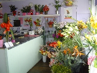 Hole in the Wall Florist