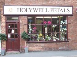Holywell Petals