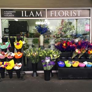 Ilam Florist