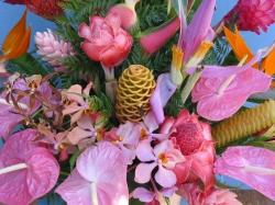 Kalaheo Flowers