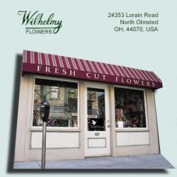 Kathy Wilhelmy Flowers