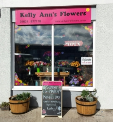 Kelly Ann's