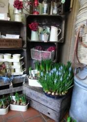 Kingfisher Flower Shop