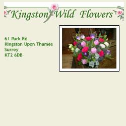 Kingston Wild Flowers