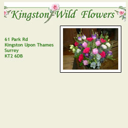 Kingston Wild Flowers