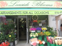 Leaside Blooms - Toronto