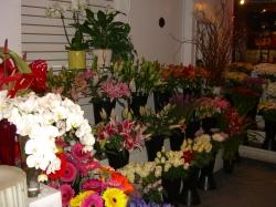 Lee's Discount Florist