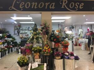 Leonora Rose