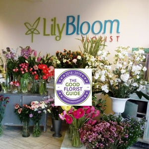 Lily Bloom Florist