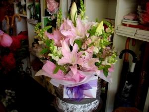 Lily Surprise Box