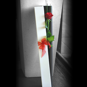 Long Single Rose Box *With Vase*