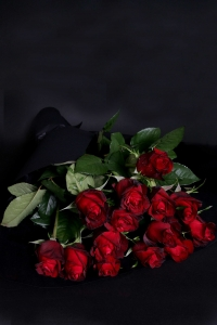 Long Stem Red Roses - 1 Dozen
