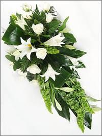 Longiflorum Lily